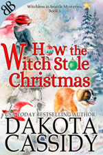 How the Witch Stole Christmas -- Dakota Cassidy